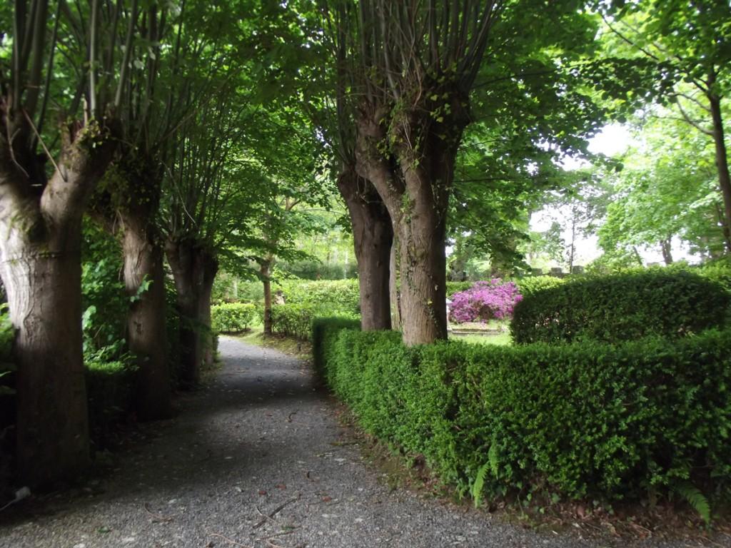 V Empacho Misterioso - Jardines del Palacio